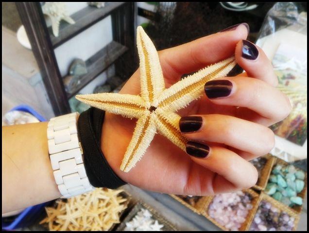 deniz yıldızı nereye gittim ankarada bereye gidilir blogger ankara kalesi ankara kalesi deniz yıldızı ankara kalesi dükkanları ne aldım Yazın Yapılacak Şeyler / Ben Bu Yaz Bronzlaşmak…