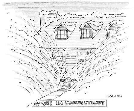 Moses in Connecticut: Funny Board, Nemo Storm, Snow, Chuckles, Funny Stuff, Moses, Sydesjokes Funny, 2013 Cartoons