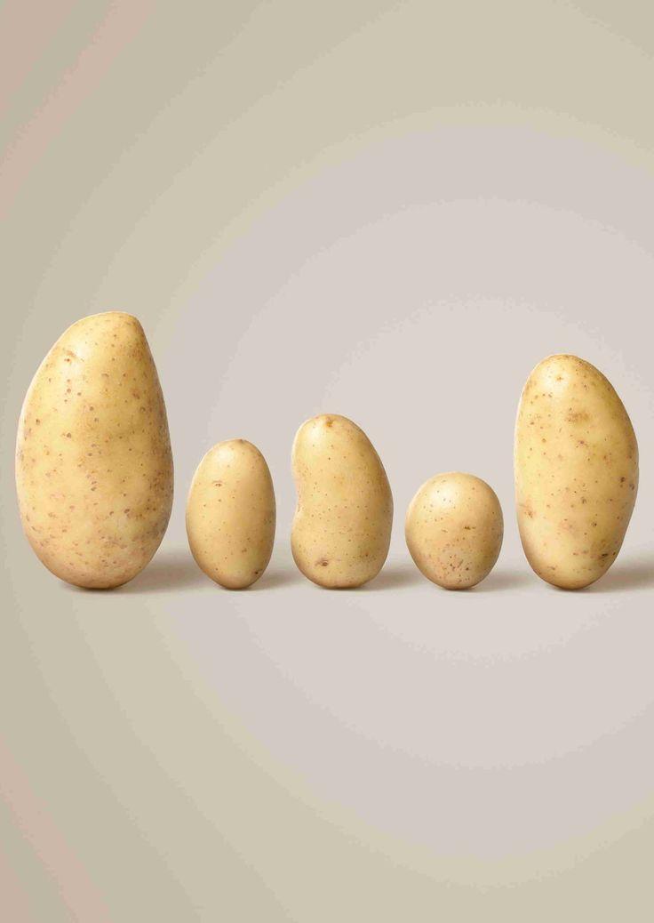 10 besten Kartoffel Bilder auf Pinterest  Kartoffel Schweiz und