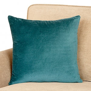 Formal Living Couch: Mallard Green Toss pillow (have to see the blue/green you have again) $9.99