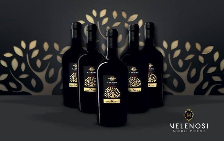 Questo mese vi presentiamo la nostra Lacrima di Morro D'Alba Doc Superiore Velenosi! La Lacrima è sicuramente uno dei vini più noti della produzione vitivinicola marchigiana. Un vino pieno di personalità dal colore rosso rubino accompagnato da un gusto armonico e piacevole. Nelle prossime settimane vi sveleremo i principali caratteri organolettici e alcuni piacevoli abbinamenti culinari di questo meraviglioso vino.