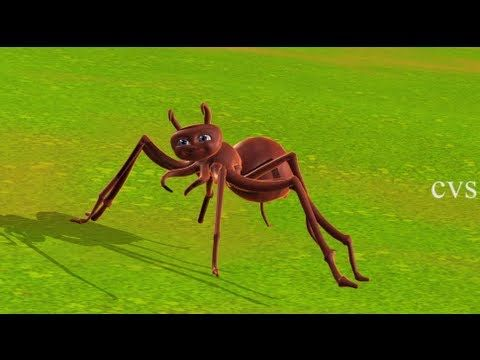 Itsy bitsy spider | Incy wincy spider - 3D Animation English Nursery rhy...