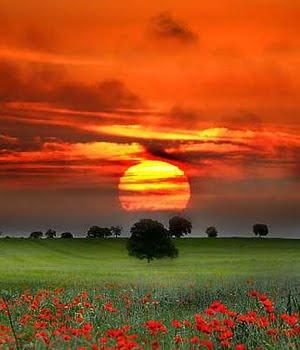 paisaje rojo