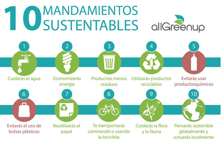 AllGreenUp, la app que premia tus actos sustentables | De Papel a Digital