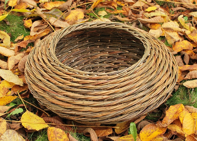 Katherine Lewis / willow coil. This one is called Whirlpool and was purchased by Steve Cole in 2012.