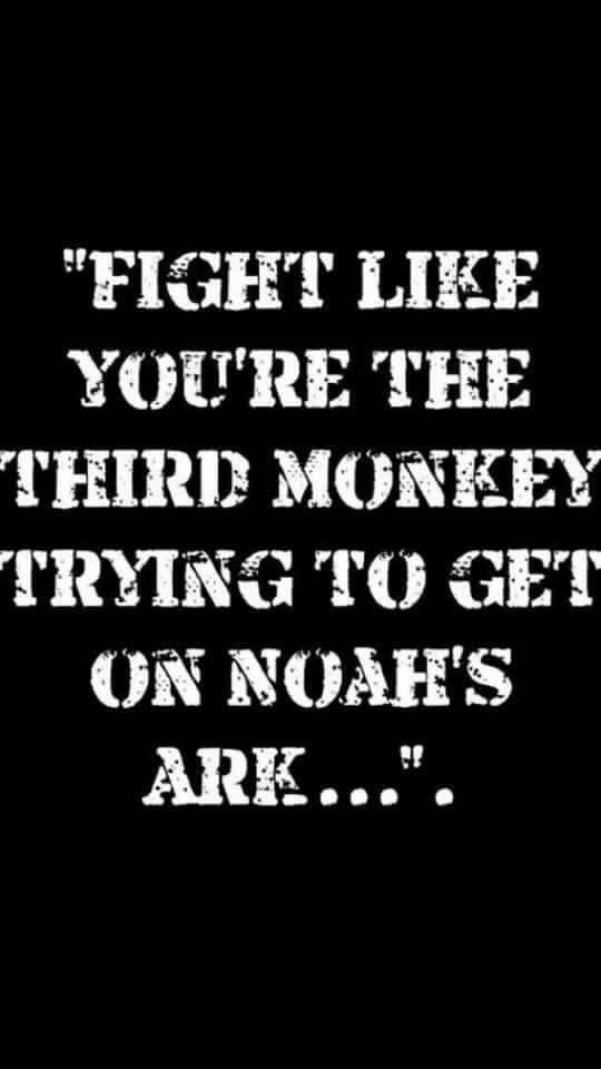 Fight like you're the 3rd monkey trying to get on Noah's ark... #kravmaga #kravlife