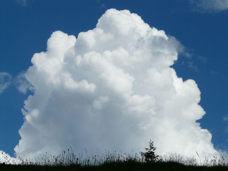 Wolke, Quellwolke, Cumulus, Gewitter, Himmel, Blau