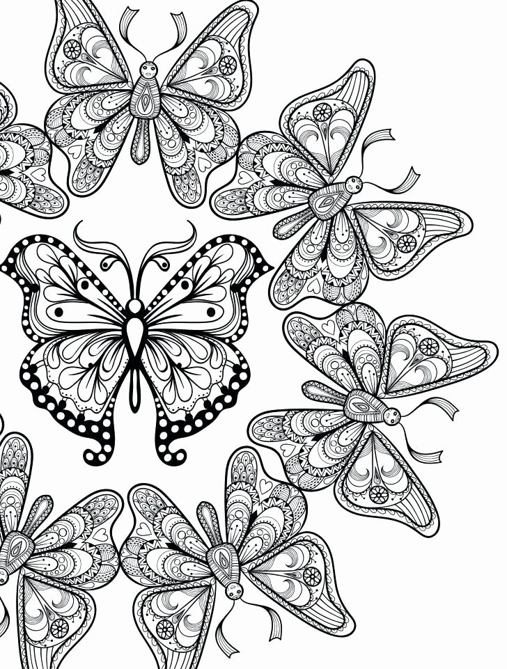 Butterfly Coloring Pages Adults Unique Printable Butterfly Coloring Page Momchilovtsifo Butterfly Coloring Page Mandala Coloring Pages Coloring Pages