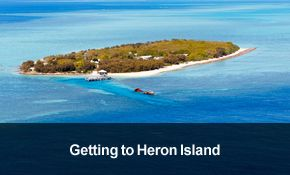 Great Barrier Reef Accommodation | Heron Island Resort