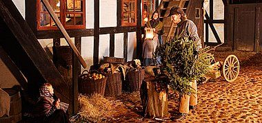 """""""Experience how Danes have celebrated the holidays for centuries.  Exciting activities await the entire family with historical shops, Living ..."""" Christmas in Den Gamle By"""