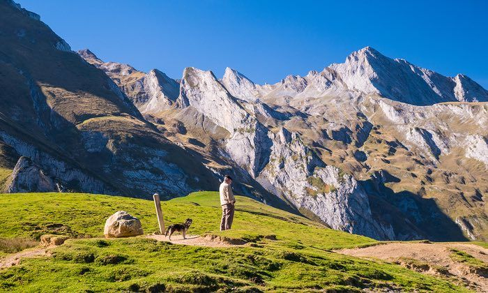 A pretty pass: why France's Col du Soulor is great for bikes and birding | Travel | The Guardian