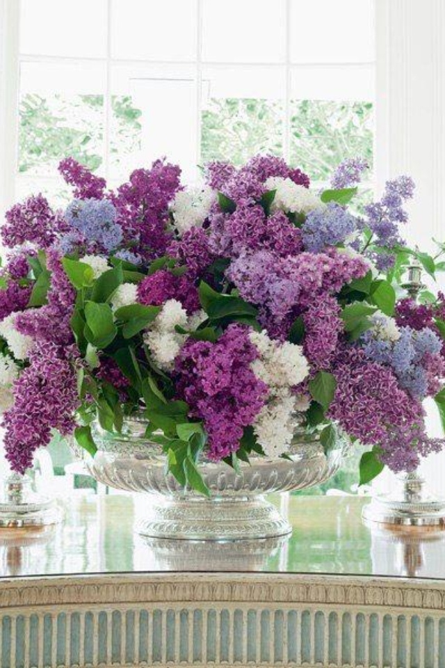 Lilacs--I can almost smell them!