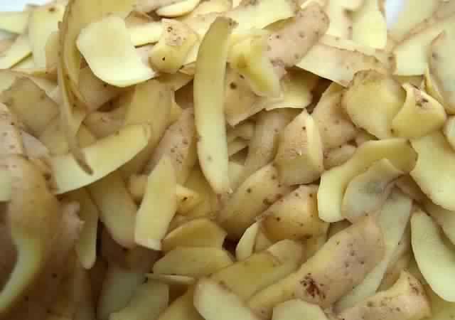 Différentes utilisations Pelures de pommes de terre    -       Épluchures de pommes de terre  Les meilleures purées de pommes de terre se préparent sans la peau des patates. Mais au lieu de placer les pelures aux rebuts, on en fait des croustilles santé:  1- Chauffer le four à 180°  2- Enrober les épluchures d'huile d'olive. Saler et poivrer.  3- Étaler sur  plaque de cuisson tapissée  papier parchemin.  4- Cuire 15 mn.