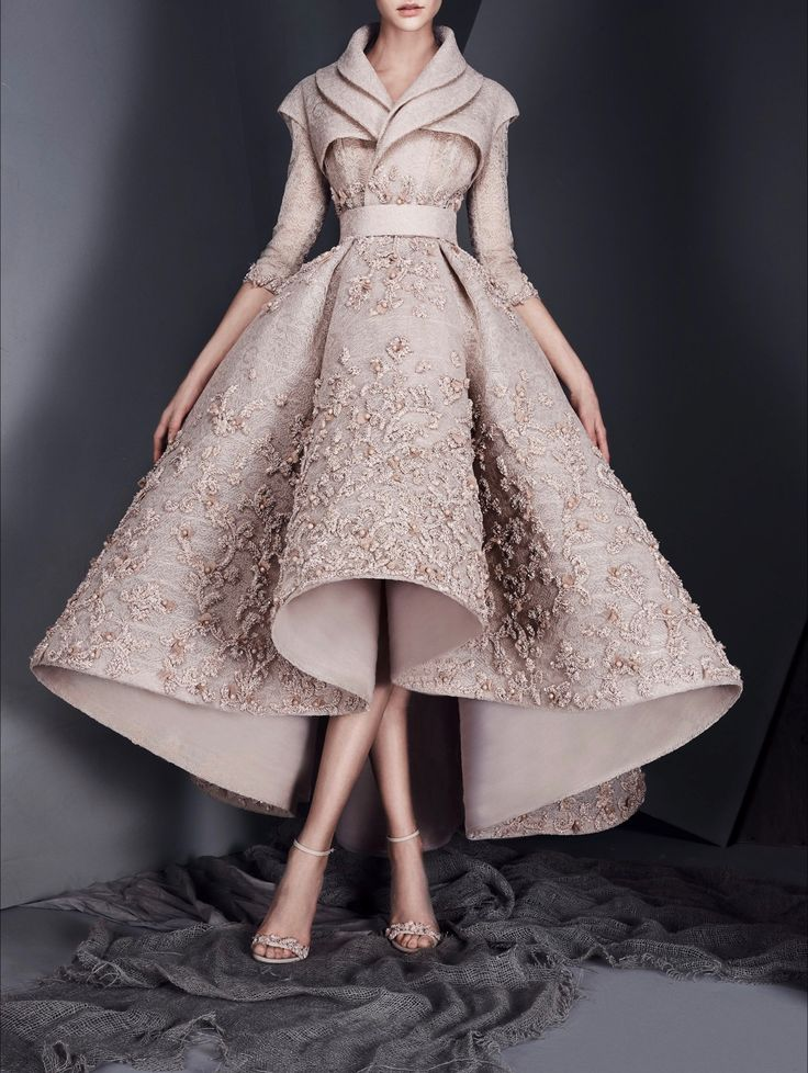 "belleamira: "" Ashi Studio Spring 2017 Couture """