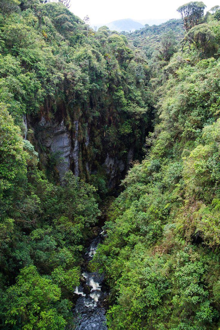 https://flic.kr/p/sNzu9g | Magdalena River - San Agustin - Popayan | Magdalena River - San Agustin - Popayan - Colombia - South America  We depart towards Popayan through National Park