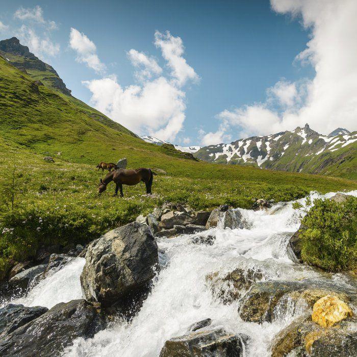 Deluxe Auszeit umgeben von Bergen: 2 Nächte im Luxus Chalet für 4 Personen in Österreich mit Frühstücksservice + privater Sauna ab 285 € (statt 505 €) - Urlaubsheld | Dein Urlaubsportal