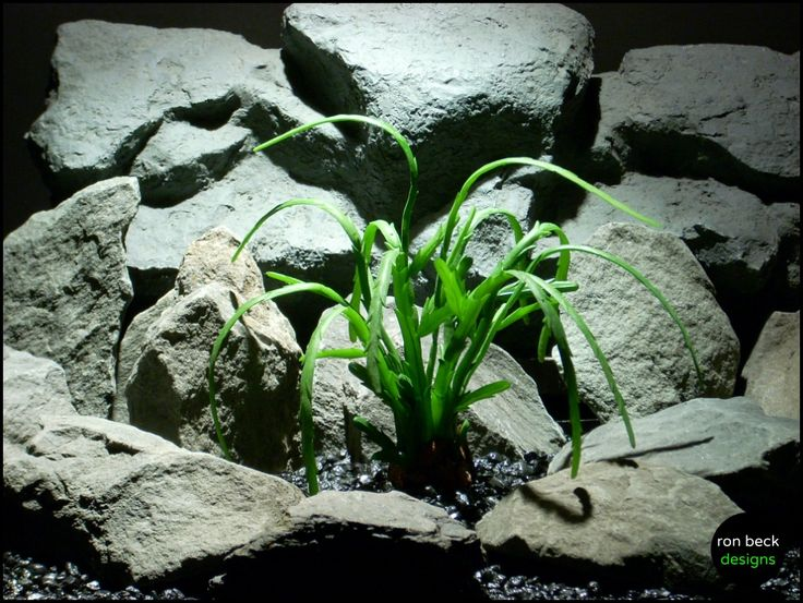 reptile decor plants: pencil succulent, approx. 7.5″ high. The stems are made of a rubbery latex material. Weighted (w/natural river rock) plastic base; included. Product #: psrp149 from ron beck designs | ronbeckdesigns.com #ron_beck_designs #aquarium #plant #decor #artificial #reptile #Reptile #Terrarium