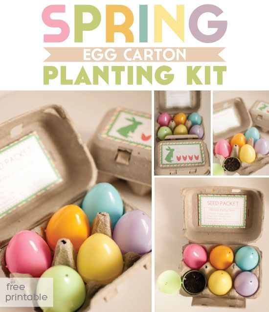 28 best egg cartons images on pinterest egg boxes easter and i made these egg carton planting kits for easter gifts super easy plus you can use the free printable negle Gallery