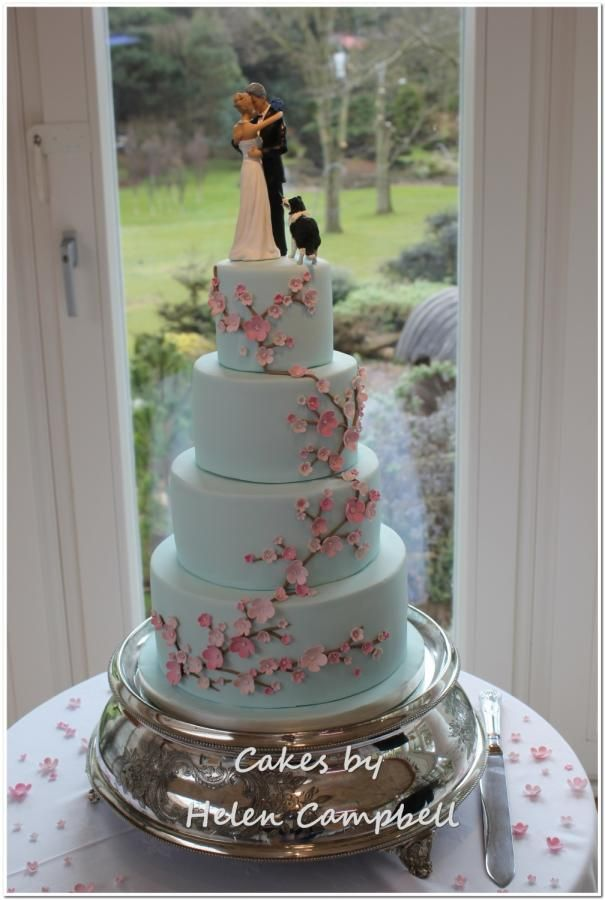 affordable wedding cakes dc cherry blossom wedding cake cake by helen campbell 10556