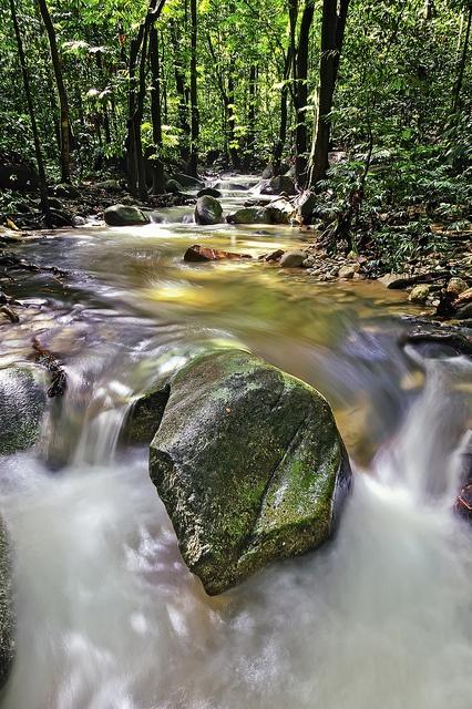 Sungai adalah aliran air yang besar dan memanjang yang mengalir secara terus menerus dari hulu (sumber) menuju hilir (muara)  Sungai juga ada yang berada di bawah tanah yang disebut underground river.