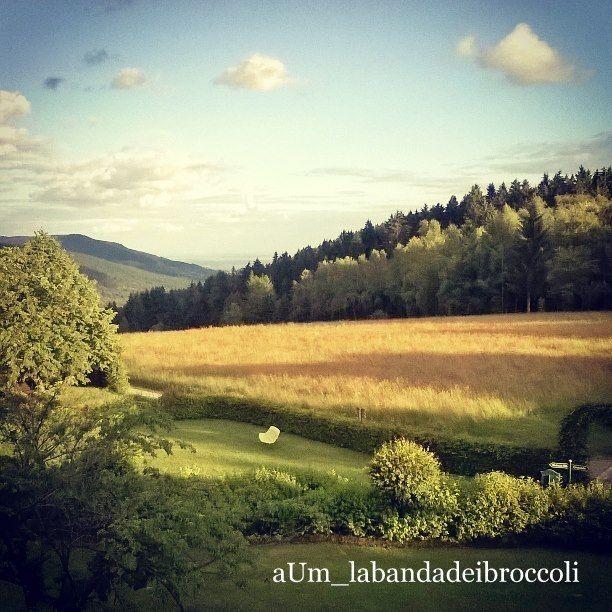 #Bayerischerwald fra natura, benessere e buon cibo (anche glutenfree) - La banda dei Broccoli