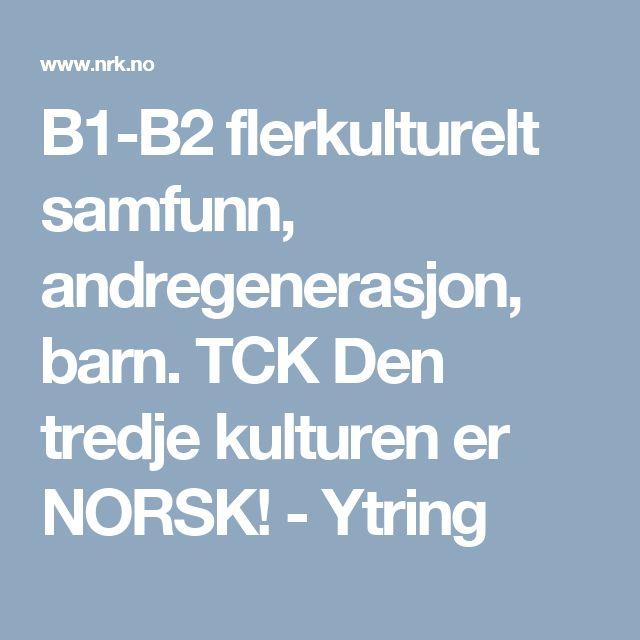 B1-B2 flerkulturelt samfunn, andregenerasjon, barn. TCK Den tredje kulturen er NORSK! - Ytring