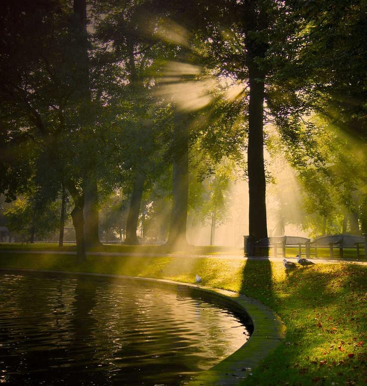 Through light