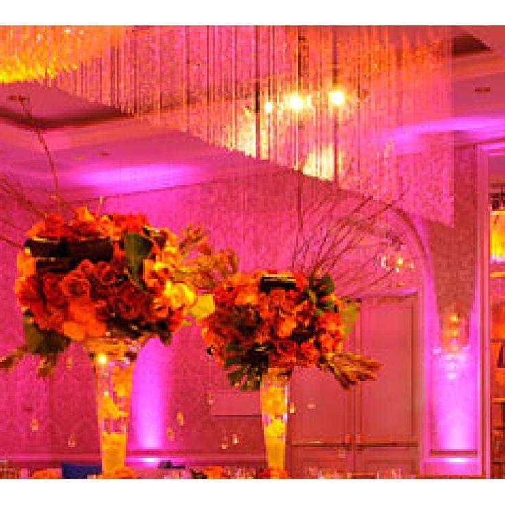 994 best tarheel wedding images on pinterest wedding inspiration 994 best tarheel wedding images on pinterest wedding inspiration wedding ideas and decorations junglespirit Choice Image