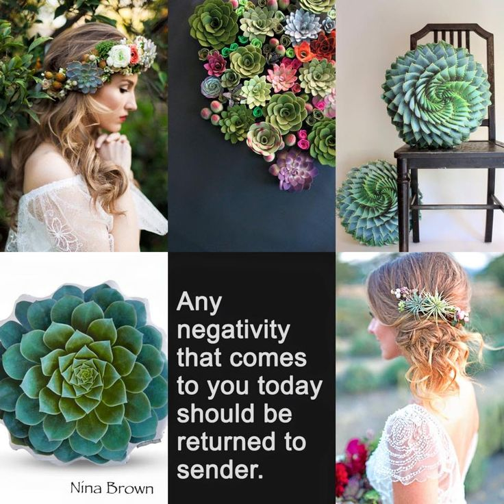 No negativity! #postivity #joy https://www.facebook.com/www.ninabrownstylecoach/photos/pb.494961253931382.-2207520000.1458636225./886629518097885/?type=3&theater www.ninabrown.co.za