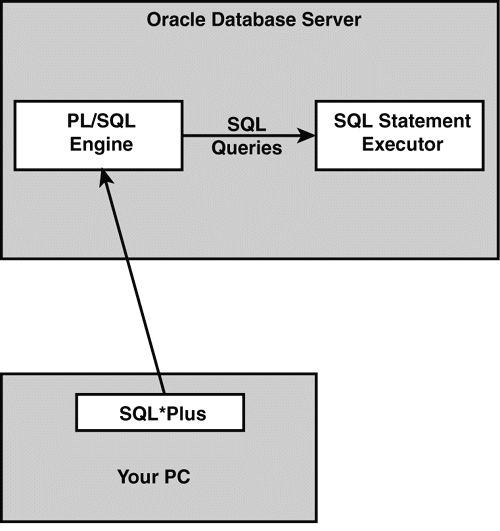 Day 1: Learning the Basics of PL/SQL - Developer.com