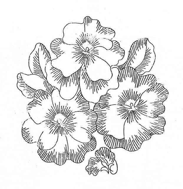 vintage embroidery patterns | vintage embroidery designs 9 - a gallery on Flickr