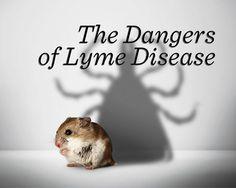 The Untold Dangers of Lyme Disease