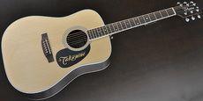 TAKAMINE / EF360GF N Acoustic Guitar Free Shipping! δ