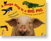 A Huge Hog is a Big Pig   by Francis McCall (Greenwillow)  Picture book/concept book/game book  Photographs and limited text ask and answer these very funny questions (each answer is provided within a word family); can also be used in blending/segment (see below) and rhyming.
