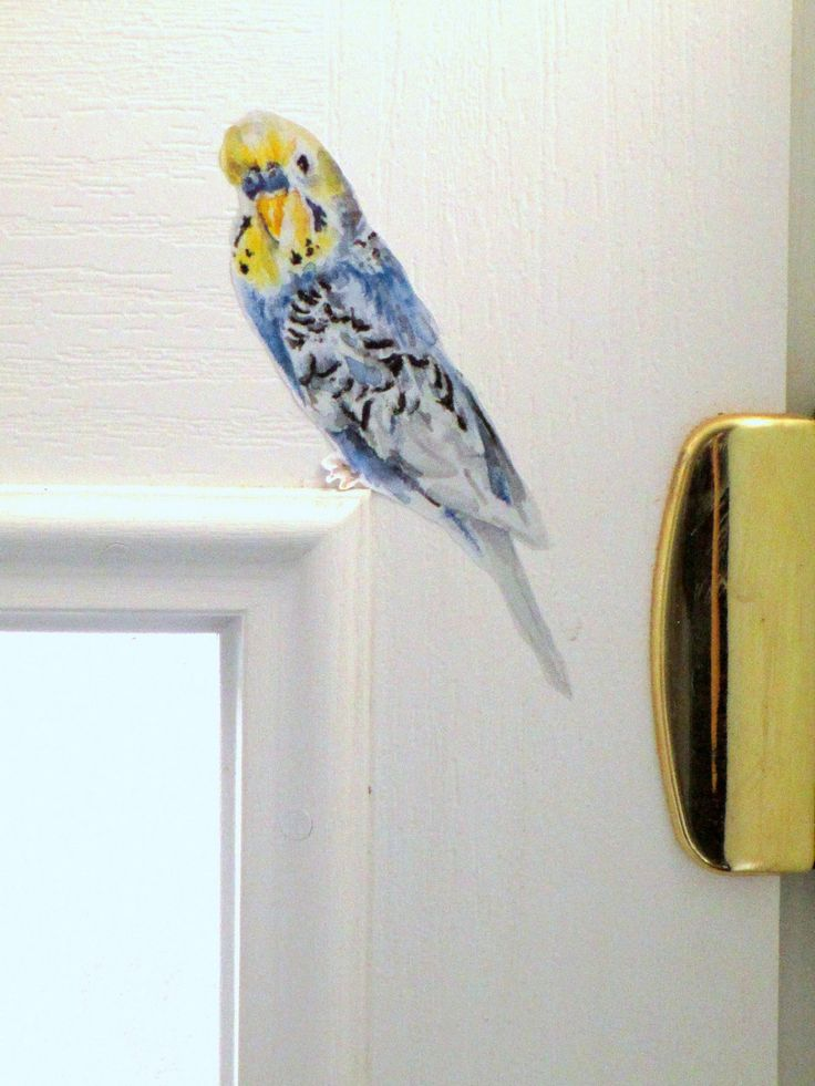 Wall sticker budgie // budgie wall decal // bird decals // budgerigar gifts // bird home decor // budgie lovers // budgie stocking filler by SmockBallpoint on Etsy