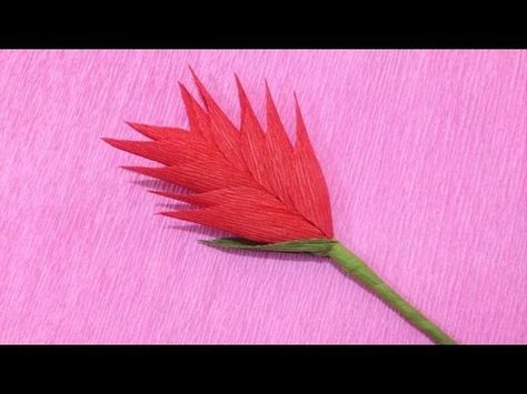 How to Make Cockscomb Crepe Paper flowers - Flower Making of Crepe Paper - Paper Flower Tutorial - YouTube