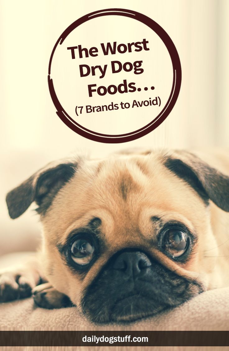 The Worst Dry Dog Foods 7 Brands To Avoid Best Dog Food