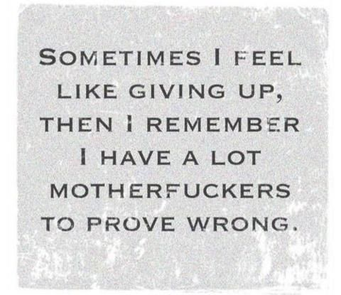 exactly but most importantly to prove to myself I can do it.