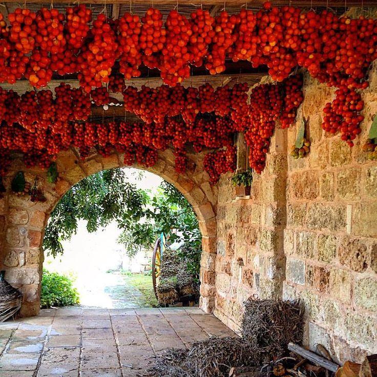 Masseria Le Stanzie in Salento, Puglia | Photo credit: Espressino Travel