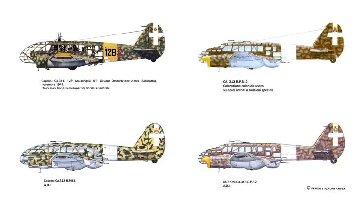Caproni CA. 311 - Caproni CA. 313 RPB 2 - Caproni CA. 313 RPB 1 - Caproni CA. 313 RPB 2