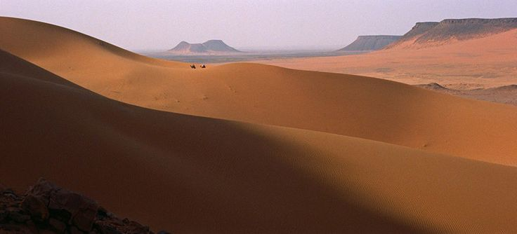 cinematography in lawrence of arabia essay For a movie that runs 216 minutes, plus intermission, lawrence of arabia is not dense with plot details it is a spare movie in clean, uncluttered lines, and there is never a moment when we're in doubt about the logistical details of the various campaigns.