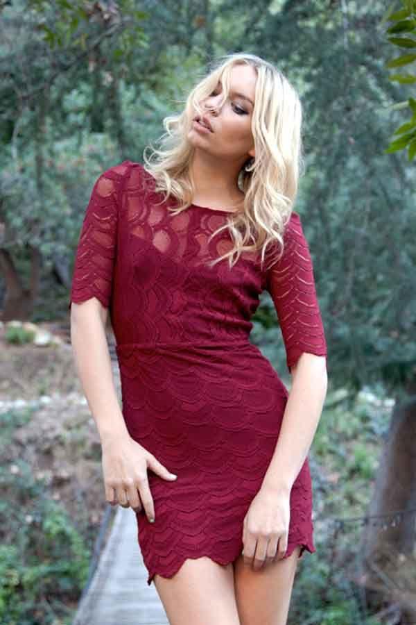 Nightcap victorian lace tube dress