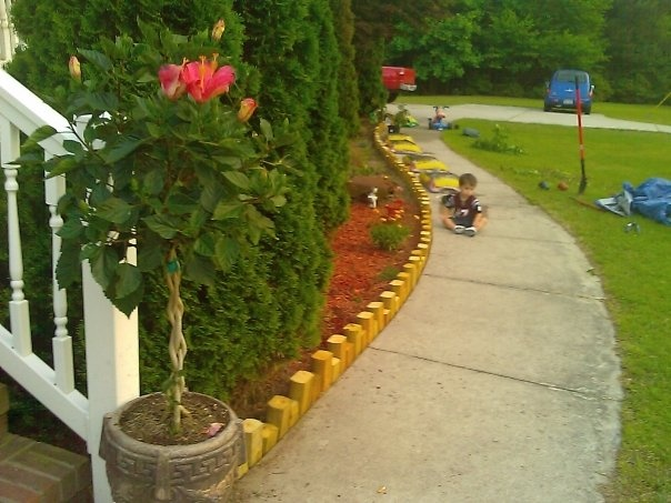 Landscaping With Wood Logs : Garden edging patio beds landscape