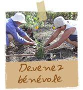 Devenez bénévole - Terre & Humanisme : transmettre l'agroécologie