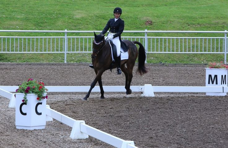 What the Letters in the Dressage Arena Really Stand For... presented by Total Saddle Fit