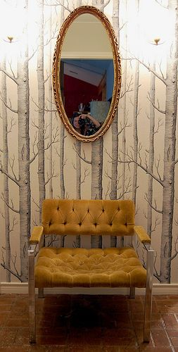 tree wallpaper by Cole & Son, Woods, and retro chair