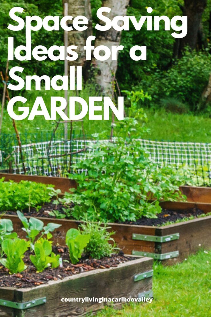 Pin On Gardening In Small Spaces