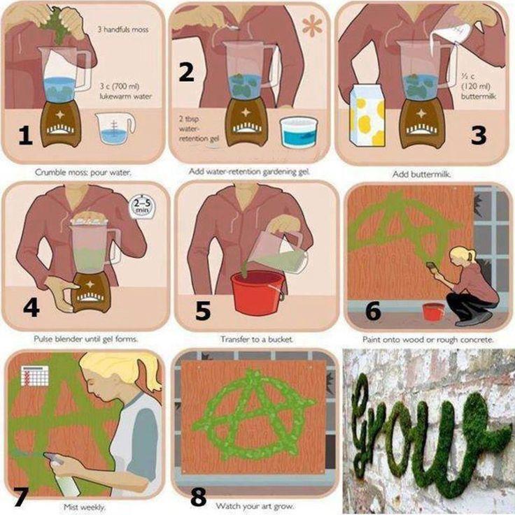 Moss Graffiti. How to make an ecological graffiti that grows!