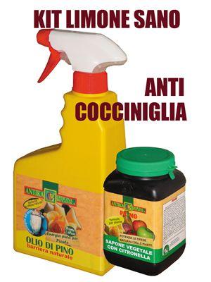 olio di pino + sapone molle potassico citronella