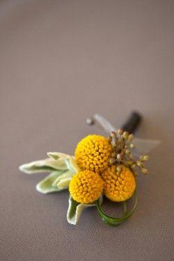 Gauteng Florists / BeeHappy Events